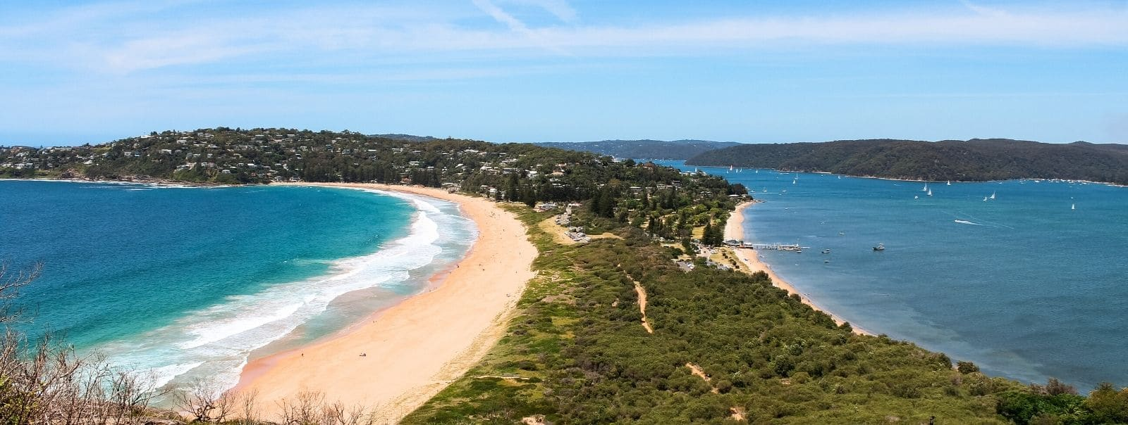 Looking out over Palm Beach from lookout, one of the top things to do in Sydney